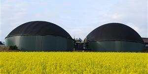 Biogas: Preisvergleich