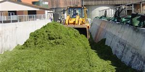Bild: Biogasanlage - Traktor schiebt Gras