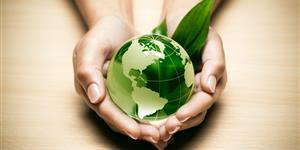 Ökostrom-Zertifikate und -Gütesiegel