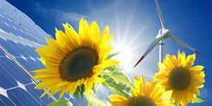 Ökostrom-Zertifikate und Gütesiegel