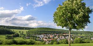 Bild: Landschaft im Taunus