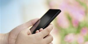 Bild: Smartphone vor Tulpen
