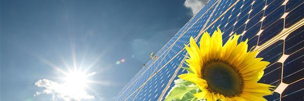 Bild: Solaranlage mit Sonnenblume