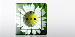Bild: Stecker mit Blüte