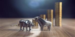 Bild: Symbolfoto Börse mit Bär, Stier und Geldstapeln